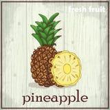 Ilustração do desenho da mão do abacaxi Fundo do esboço do fruto fresco Foto de Stock Royalty Free