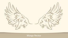 Ilustração do esboço das asas no fundo branco Vetor ilustração do vetor