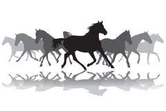 Ilustração do fundo da silhueta dos cavalos trotando Imagens de Stock