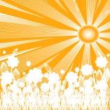 Ilustração do fundo do verão Imagem de Stock Royalty Free