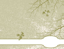 Ilustração do fundo floral da mola. Imagem de Stock Royalty Free
