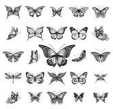 Ilustração do gráfico das borboletas Fotografia de Stock