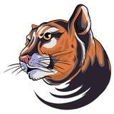Ilustração do gráfico de vetor principal da mascote da pantera do puma ilustração do vetor