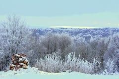 Ilustração do inverno artwork Vista do hillfort foto de stock
