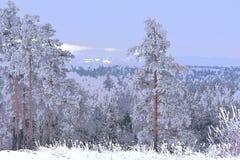 Ilustração do inverno artwork Vista do hillfort fotos de stock