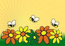A ilustração do jardim Fotografia de Stock
