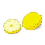 Ilustração do limão amarelo Fotografia de Stock