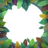 A ilustração do mundo da imaginação das crianças: Mistério Forest Card ilustração stock