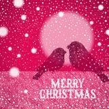Ilustração do Natal com os bullfinches desenhados mão Imagens de Stock