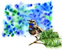 Ilustração do pássaro azul bonito no pinho do ramo Imagem de Stock