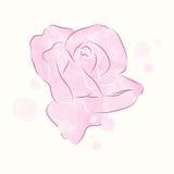Ilustração do rosebud da aquarela Imagem de Stock