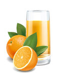 Ilustração do suco de laranjas Fotos de Stock Royalty Free