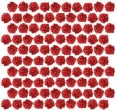 ilustração do teste padrão de Rosa vermelha Foto de Stock