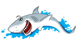 Ilustração do tubarão do perigo Imagens de Stock Royalty Free