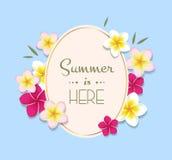 Ilustração do verão com quadro e flores Imagem de Stock Royalty Free