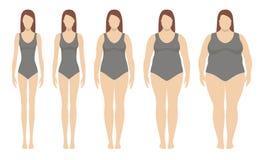 Ilustração do vetor do índice de massa corporal de pouco peso a extremamente obeso Imagem de Stock Royalty Free