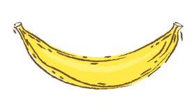 Ilustração do vetor da banana, esboço e estilo da garatuja, bananas da tração da mão Foto de Stock Royalty Free