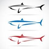 Ilustração do vetor da bandeira do tubarão Fotos de Stock Royalty Free