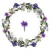 Ilustração do vetor da festão floral bonito dos açafrões e dos lírios isolados no fundo branco imagem de stock