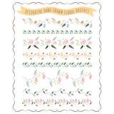 Ilustração do vetor da flor pastel tirada mão e da escova floral ilustração royalty free