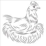 Ilustração do vetor da galinha Fotos de Stock Royalty Free