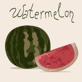 Ilustração do vetor da melancia (inteira e parte) Fotografia de Stock