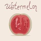Ilustração do vetor da melancia (metade) Foto de Stock