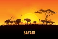 Ilustração do vetor da paisagem de África Fotografia de Stock Royalty Free
