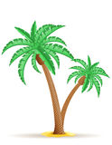 Ilustração do vetor da palmeira Foto de Stock