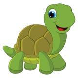 Ilustração do vetor da tartaruga dos desenhos animados Foto de Stock