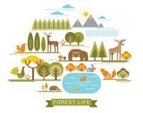 Ilustração do vetor da vida da floresta Imagens de Stock