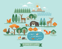 Ilustração do vetor da vida da floresta Fotografia de Stock Royalty Free