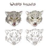 Ilustração do vetor das cabeças tiradas mão dos lobos Dois deles são pintados, dois outro são rabiscados Esta ilustração está lig Imagem de Stock Royalty Free