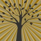 Ilustração do vetor de Brown da silhueta da árvore Foto de Stock Royalty Free