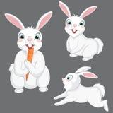 Ilustração do vetor de coelhos bonitos Foto de Stock