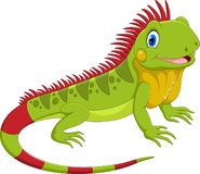 Ilustração do vetor de desenhos animados bonitos da iguana ilustração stock