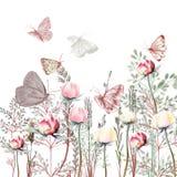 Ilustração do vetor de 19 flores com plantas Provance do vintage ilustração royalty free
