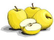 Ilustração do vetor de maçãs do amarelo do fruto do desenho Imagem de Stock Royalty Free