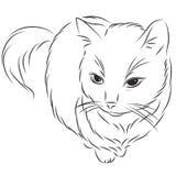 Ilustração do vetor de um gato Fotos de Stock Royalty Free
