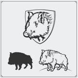 Ilustração do vetor de um javali Imagens de Stock