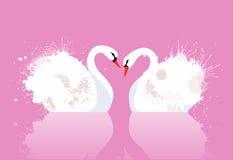 A ilustração do vetor de um par de cisnes com aquarela espirra Imagens de Stock