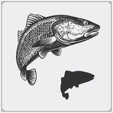 Ilustração do vetor de um peixe Silhueta dos peixes Fotos de Stock
