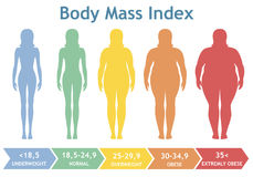 Ilustração do vetor do índice de massa corporal de pouco peso a extremamente obeso Silhuetas da mulher com graus diferentes da ob ilustração stock