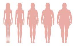 Ilustração do vetor do índice de massa corporal de pouco peso a extremamente obeso Silhuetas da mulher com graus diferentes da ob Fotografia de Stock