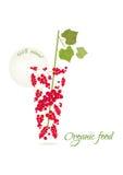 Ilustração do vetor do alimento biológico Fotos de Stock