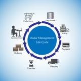 Ilustração do vetor do ciclo de vida da gestão da ordem Fotografia de Stock