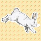 Ilustração do vetor do coelho tirado mão Imagens de Stock