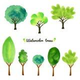 Ilustração do vetor do estilo da aquarela de uma coleção das árvores, arbustos, e as gramas, isoladas no branco Imagens de Stock Royalty Free