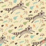 Ilustração do vetor do guaxinim bonito Fotografia de Stock