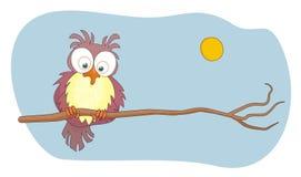 Ilustração do vetor dos desenhos animados da coruja Fotografia de Stock